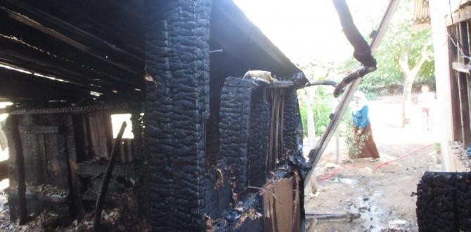 Evin Bahçesinde Çıkan Yangın Odunluğa Sıçradı