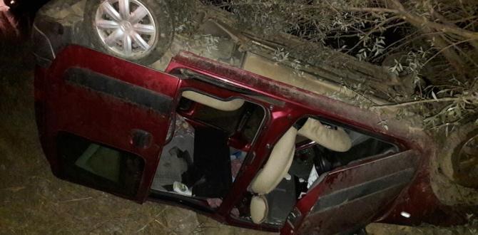 Göksun-Kayseri Yolunda Trafik Kazası