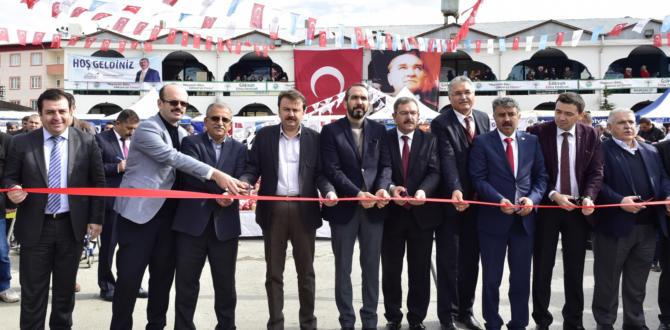GÖKSUN'DA ELMA FESTİVALİ YAPILDI.
