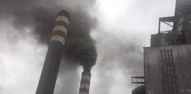 A Termik Santrali'nin Faaliyetleri Durduruldu!