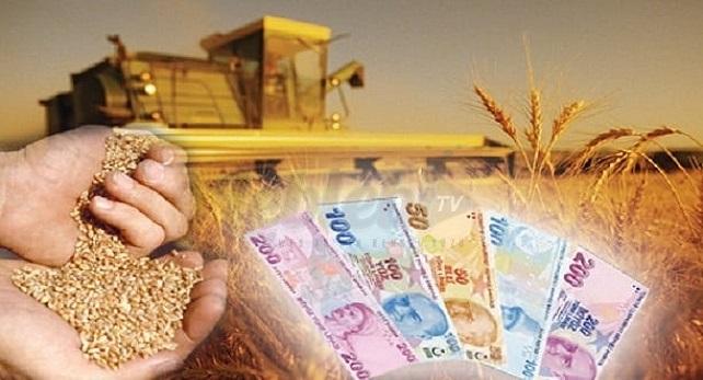 destek tarım