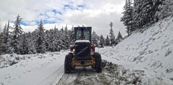 Yoğun Kar Yağışı Ulaşıma Engel Oldu!